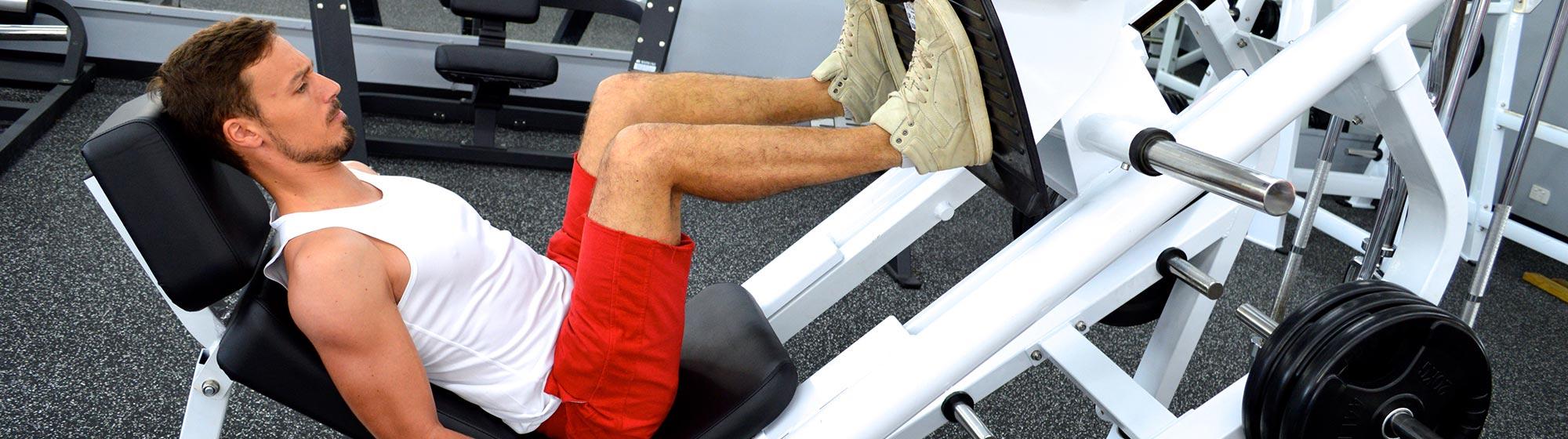 muscle building darwin
